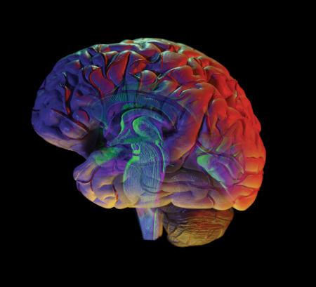 Рекомендации больным эпилепсией